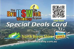 bv_special_deals_buscard300